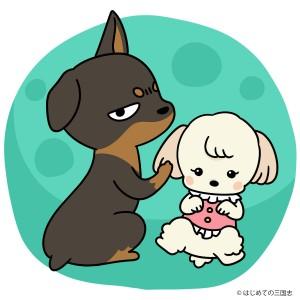 スキッパーキ犬