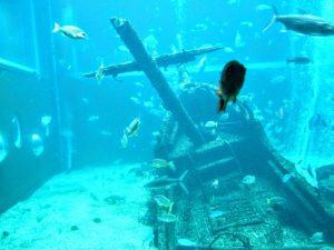 公孫陽を捕虜に董襲は船が沈没し水死
