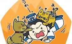 犬猫に襲われる孔明